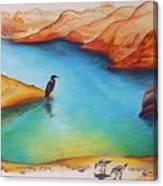 Lake Powell Birds Canvas Print