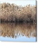Lake Reflexion Canvas Print