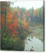 Lake Rohunta Foliage Canvas Print