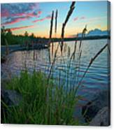 Lake Sunset And Sedge Grass Silhouettes, Pocono Mountains Canvas Print