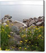 Lake Superior Shore Canvas Print