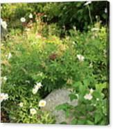 Lake Tahoe Flower Garden Canvas Print