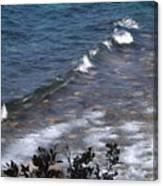 Lake Tahoe Waves Canvas Print