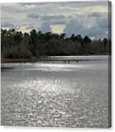 Lake Waccamaw II Canvas Print