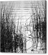 Lake Wake Canvas Print