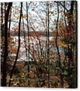 Lake Wallenpaupack Through The Trees Canvas Print