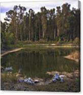 Lakeside Reflections Canvas Print