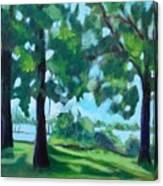 Lakeside Shadows Canvas Print