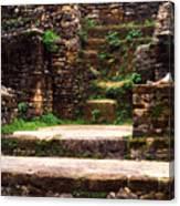 Lamanai Temple Canvas Print