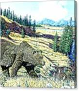Lamar Valley Grizz Canvas Print