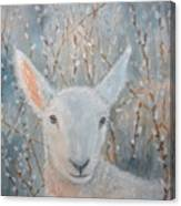 Lamb In The Willows Canvas Print