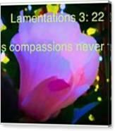 Lamentations His Compassions Never Fail Canvas Print