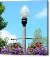 Lamp Post Canvas Print