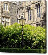 Lamppost In Front Of Green Bushes And Old Walls. Canvas Print