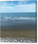 Land Sea And Ocean Background Canvas Print