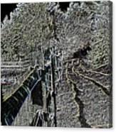 Landscape 1 Canvas Print
