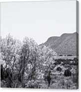 Landscape Galisteo Nm J10p Canvas Print
