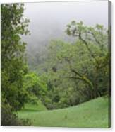 Landscape In Fog Canvas Print