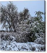 Landscape In The Snow Canvas Print