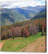 Landscape In Vail Canvas Print