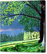 Landscape Light Canvas Print