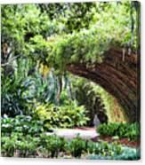 Landscape Rip Van Winkle Gardens Louisiana  Canvas Print