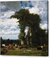Landscape With Cattle At Limousin Canvas Print
