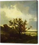 Landscape With Oaktree Canvas Print