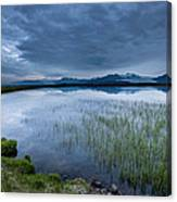 Landscape With Water Grass Canvas Print