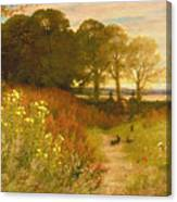 Landscape With Wild Flowers And Rabbits Canvas Print