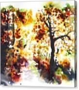 Lane Near Pont Cyfyng Canvas Print