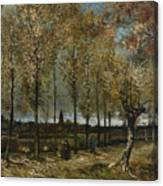 Lane With Poplars Canvas Print