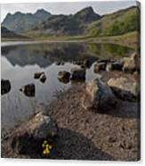 Langdale Pikes And Blea Tarn Canvas Print