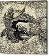 Langleys Sunspot Observation, 1873 Canvas Print