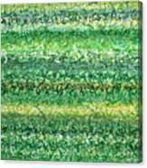 Language Of Grass Canvas Print