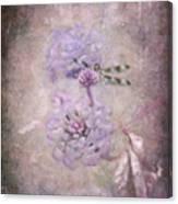 Lantana In Purple Canvas Print