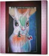 Lapin De Couleur  Canvas Print