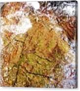 Laplash Falls Canvas Print