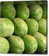 Large Heavy  Watermelons Canvas Print