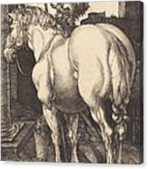 Large Horse Canvas Print