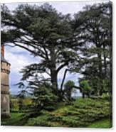 Large Trees At Chateau De Chaumont Canvas Print