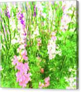 Larkspur Flowers In Soft Oil Style Canvas Print