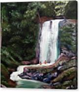 Las Marias Puerto Rico Waterfall Canvas Print