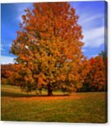 Last Call Of Fall Canvas Print
