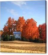 Last Color On The Farm Canvas Print