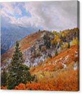 Last Fall Canvas Print