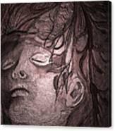 Last King Of Mars Canvas Print