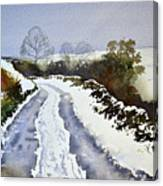 Last Of The Snow Canvas Print