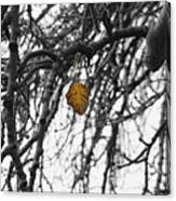 Last One To Fall Canvas Print