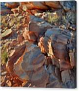 Last Sunlight On Jagged Sandstone In Valley Of Fire Canvas Print